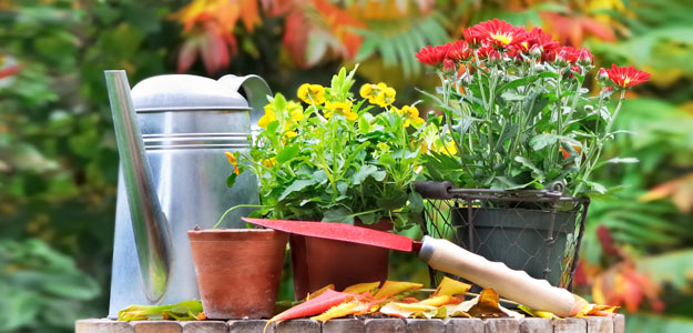 Make the Transition to Fall Plants « Bombay Outdoors on Gardening  id=48252