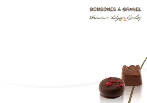 bombones_belgas_a_granel_gourmet_leon