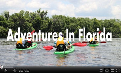 adventures-in-florida-featured-project