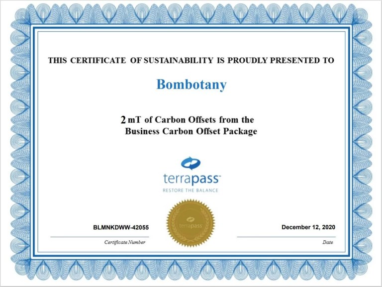carbon offset certification