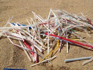 Nova lei exige que bares e restaurantes usem os de material biodegradável canudinhos