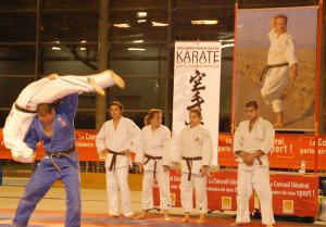4.Judo sous la direction de Didier DRESSAYRE (3ème DAN)