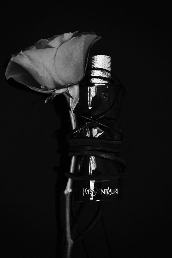parfum_Krupa02-v2