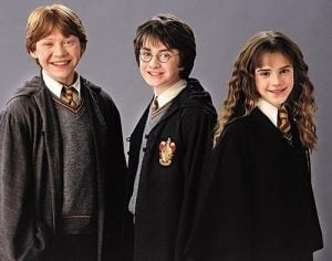 Harry-Ron-and-Hermione-hermione-granger-20053383-500-394