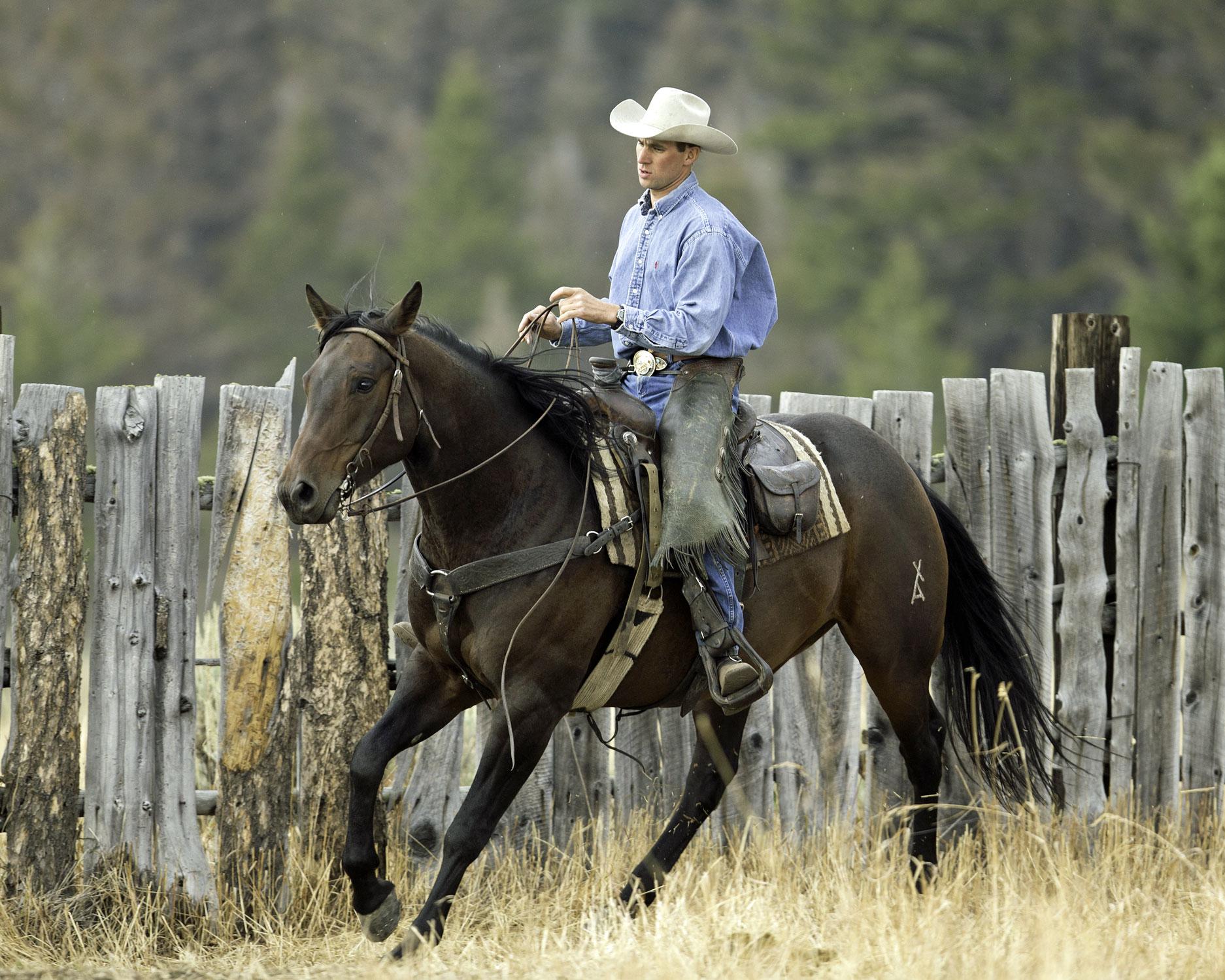 Bonanza Creek Cowboy CW