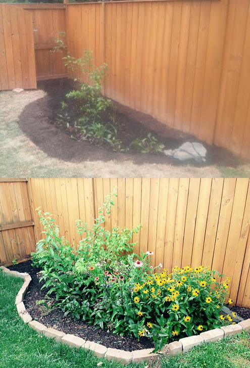 rain garden progress