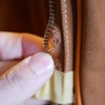 ミズノ×木の庄帆布/キャディバッグのポケットファスナーが解れている