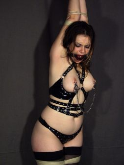 Beautiful Young Slave Blindfolded, Ball Gagged and Restrained for Fun
