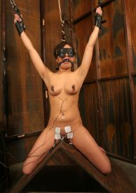 Petite Slave Restrained, Blindfolded and Tortured Hard in the Dungeon