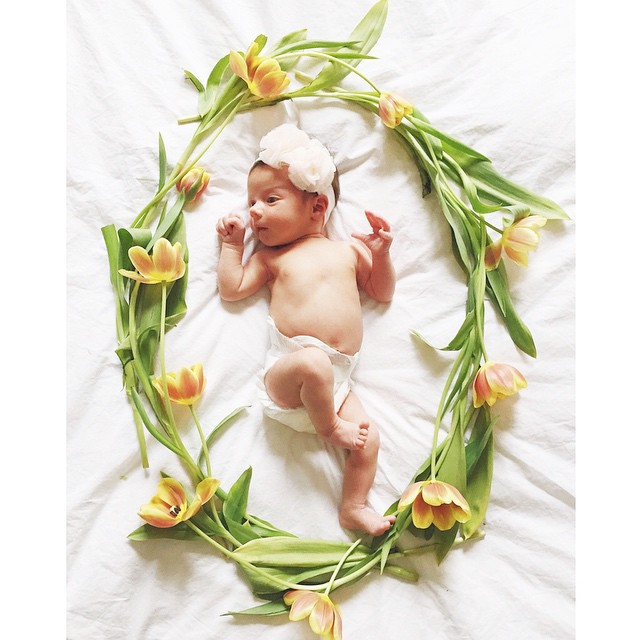 irinabond_vienna_4_weeks_old_tulips_baby_newborn