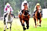 #Stoneybrook, #Steeplechase, #horse, #equestrian, #north carolina, #Carolina Horse Park