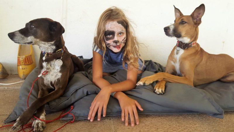Rust zacht mandgenoten en partners in crime | verlies van honden