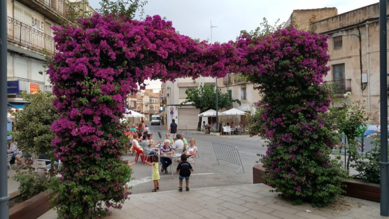 BDT Pink travelpics Tarragona