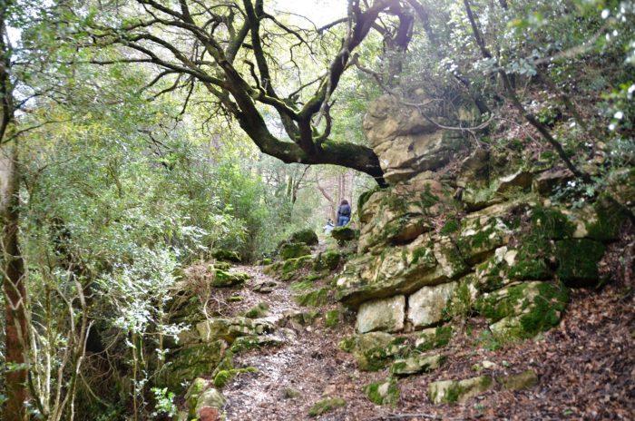 Wandeling in El Toscar Els Ports