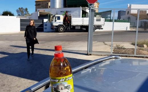 Olijvenpluk Bon Dia Tarragona blog