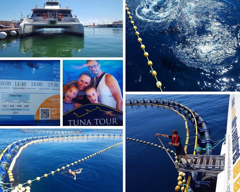 Zwemmen met tonijn bij Ametlla de Mar