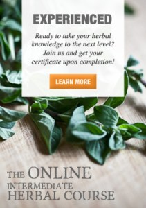 Join-us-for-the-Online-Intermediate-Herbal-Course-250-SIDEBAR
