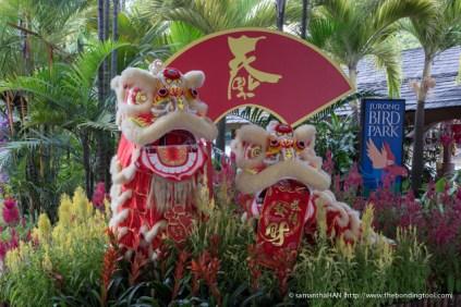 Jurong Bird Park-9881