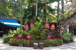 Jurong Bird Park-9889