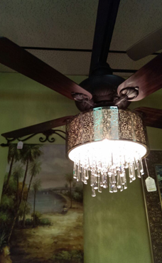 bondy s lighting fans