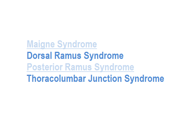 thoracolumbar-junction-syndrome