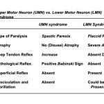 Upper Motor Neuron and Lower Motor Neuron Syndromes