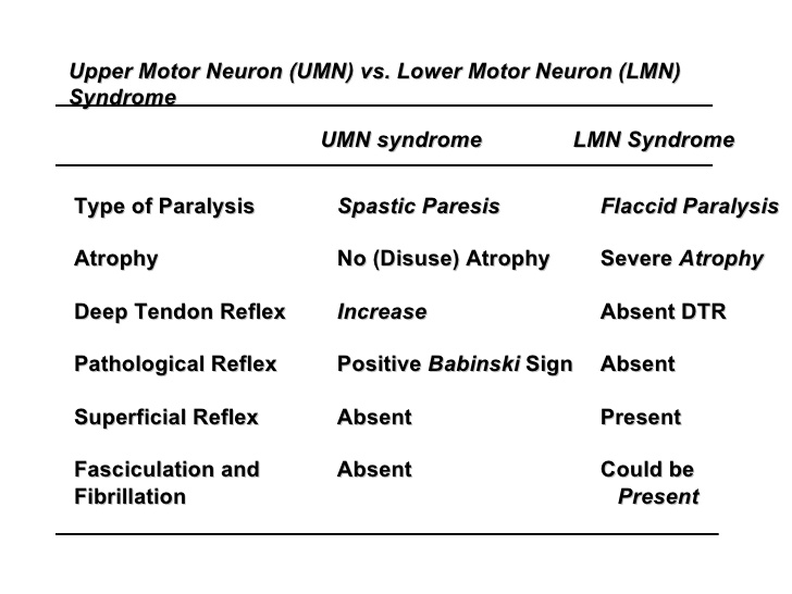 Upper Motor Neuron And Lower Motor Neuron Syndromes Bone And Spine