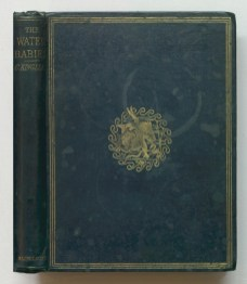 , 1863The water-babies a fairy tale for a land-baby, 1863