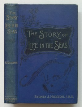 The story of life in the seas, 1898