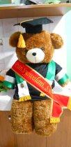 boneka wisuda beruang teddy bear jumbo 120cm bordir di selempang 2
