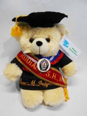 boneka wisuda puffy bear nama di baju dan selempang wisuda 3