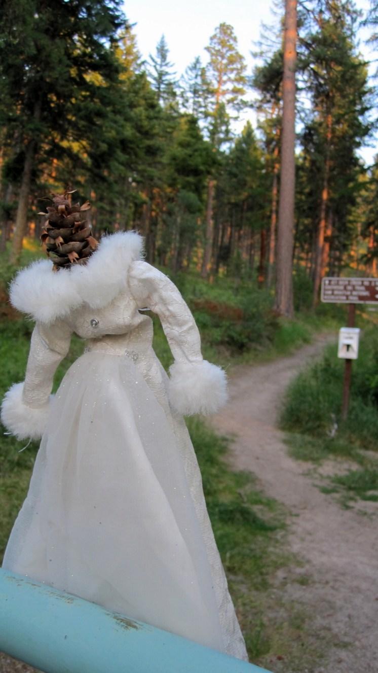 Trail Witch