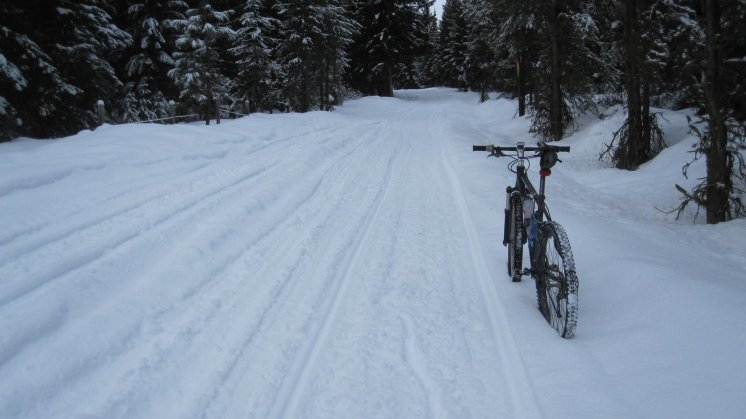 Snomobile trail in the Nine Mile Valley