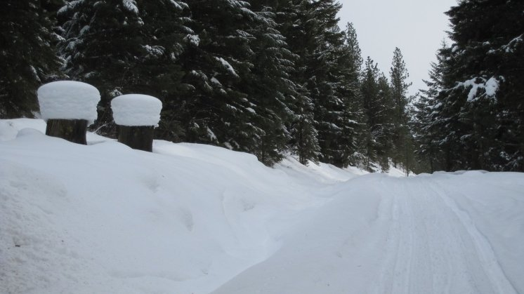 Lots of snow in the Nine Mile Valley