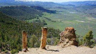 Petrified Speciman Ridge