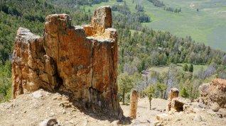 Petrafied Ridge