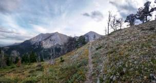 Shafthouse Trail Loop Scene
