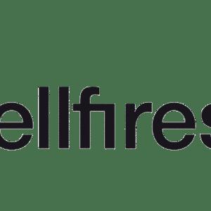 Bellfires Gas Fires
