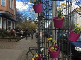 Weinbergsweg, Berlin, spring, flowers, bike, brunch, people, street