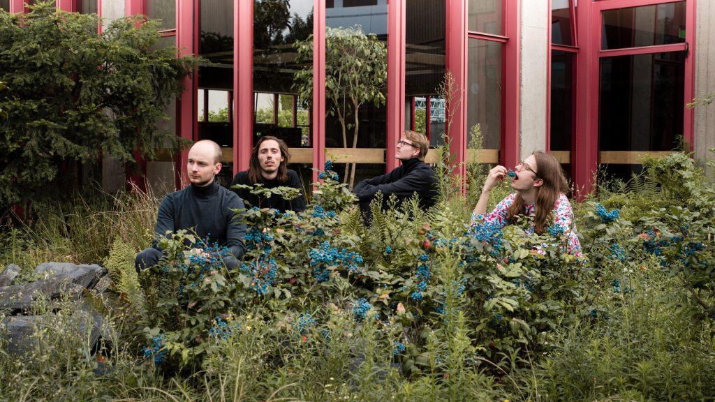 Von Wortgeneratoren im Internet zu Songtexten – Indie-Pop Band Künstler Seelachs im Interview