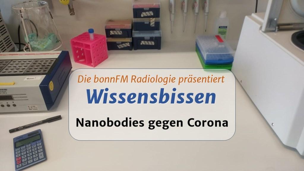 Wissensbissen 21: Nanobodies gegen Corona – Dr. Paul-Albert König und Dr. Florian Schmidt im Interview