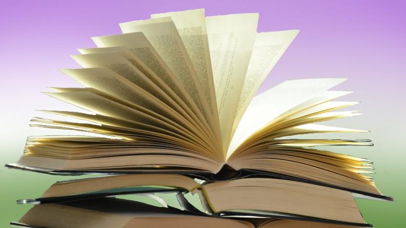 queer um vier: queere Literatur