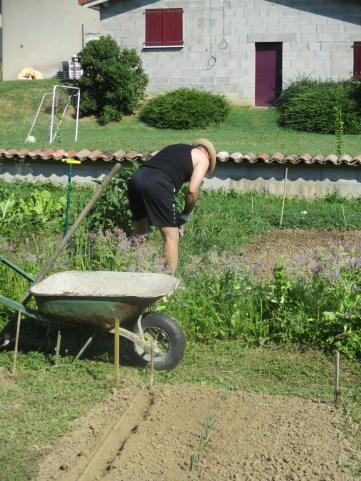 Nettoyage des aubergine pour Éric