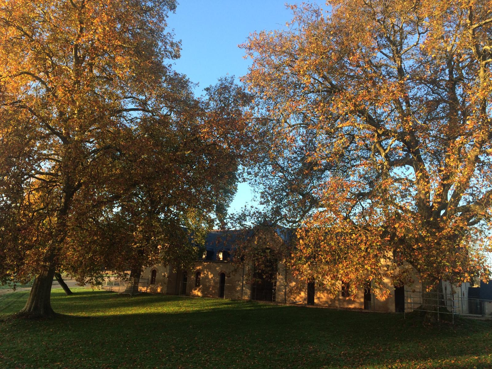 Bonnevaux October.November Update