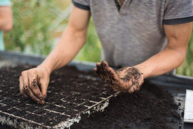 A gentler way of farming