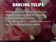 dancing-tulips-1-638-1