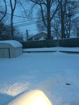 Bonnie hose blizzard pic 2