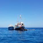 Heather Grace Multi boat charter