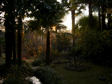 The Garden of the White Prince