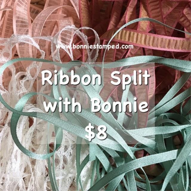 Ribbon Split #2 with Bonnie